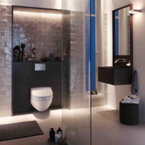 WC Frames/Cisterns & Flush Mechanisms