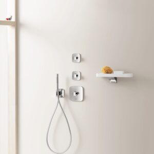 Hansgrohe Raindance Shower
